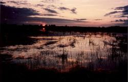 WEB---zonsondergang